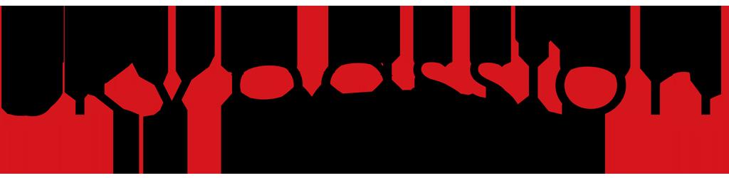 Skypassion-Boutique Montreux-Paragliding / Parapente Villeneuve